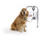 PAWZ Safespot Locking Dog Leash, Leash: 4' L, Collar: 8'-36' L