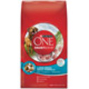 Purina ONE Large Breed Adult Formula Dog Food at PETCO