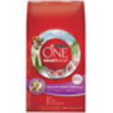Purina ONE Smartblend Healthy Puppy Formula at PETCO