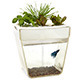 Back to the Roots AquaFarm 3 Gallon Fish Tank
