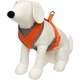 Petco Adjustable Mesh Harness for Dogs in Orange & Gray