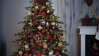 Noma Pre Lit Winston Spruce Christmas Tree 7 5 Ft