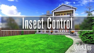 Ortho Home Defense Max Insect Control