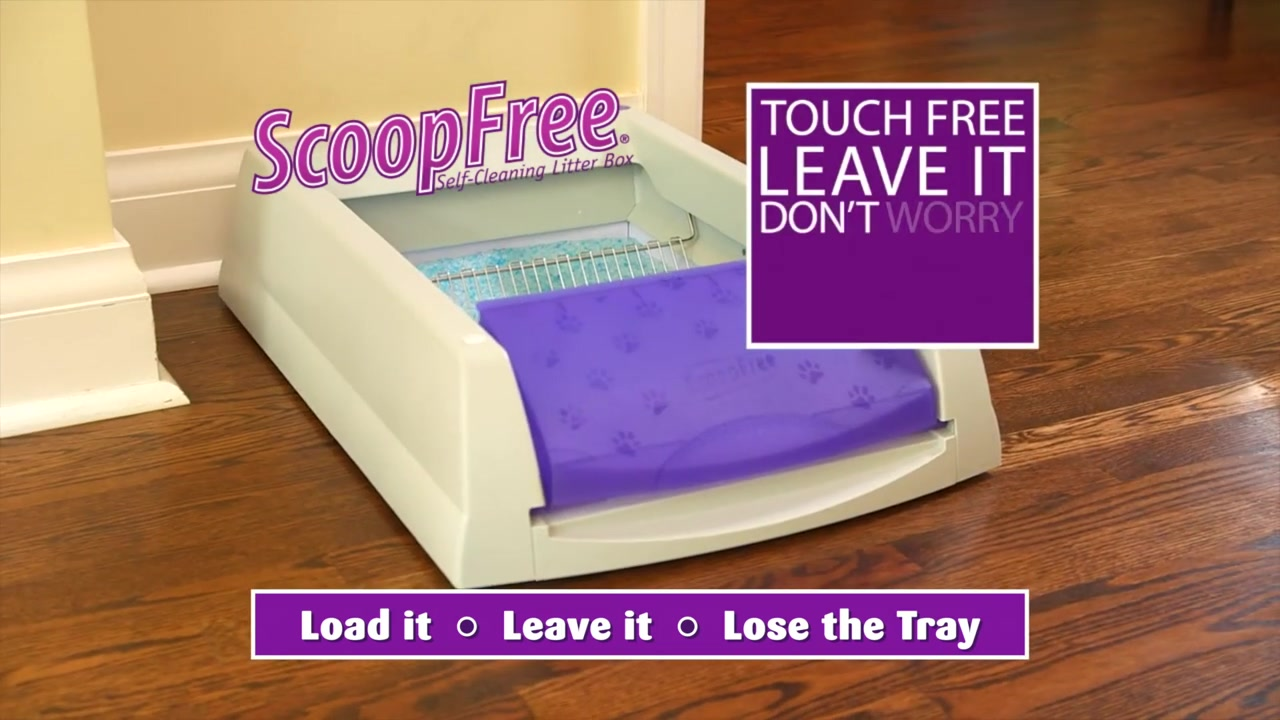 scoopfree litter box pet supplies pet food and pet products from petcocom - Scoopfree Litter Box