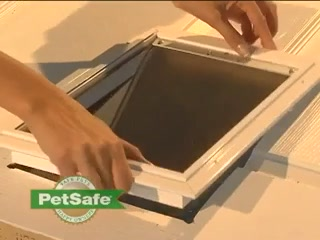 PetSafe Wall Entry Aluminum Pet Doors | Petco