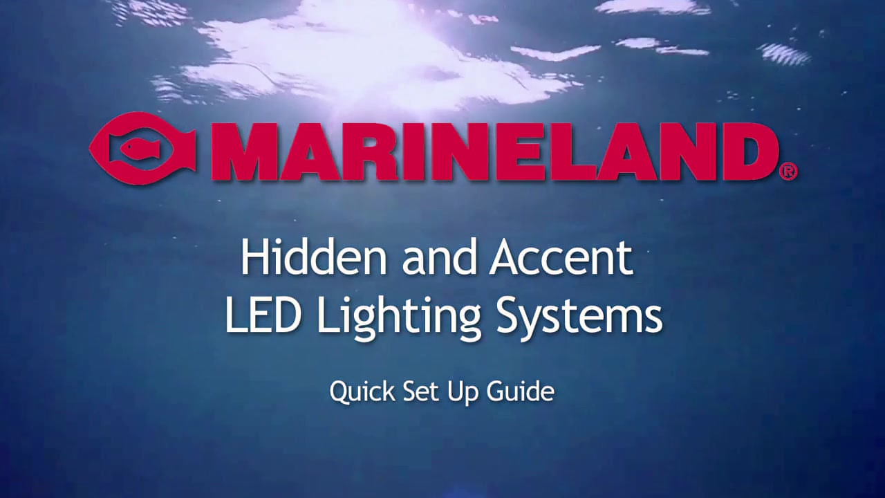 Marineland Hidden and Accent LED Lighting System - Pet Supplies ...