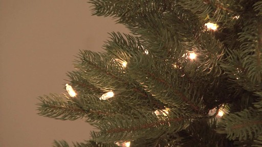 7 5 Christmas Tree Assembly Video